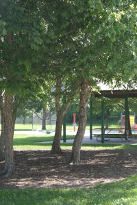 One of the charming parks in BREC's park system, a 10 minute bike ride from my house.